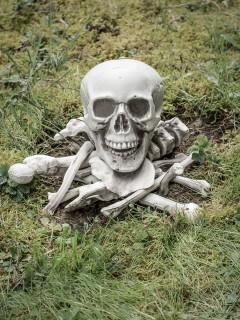 Schauriges Gebeine-Set Halloween-Deko Knochen und Schädel 14-teilig beige 40x15x16cm