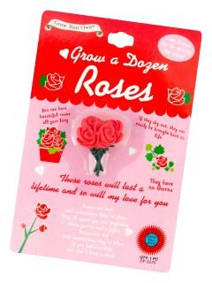 Wachsende rote Rosen Geschenk für Paare rosa-rot 15 x 10 x 1 cm