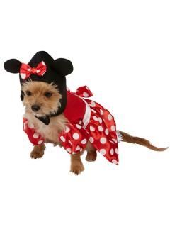 Minnie Mouse Hundekostüm Lizenzware schwarz-rot