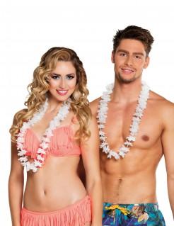Hawaii Blumenkränze Kostüm-Accessoire 25 Stück weiss