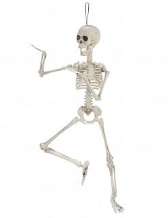 Halloween Dekoration Skelett weiss 48cm