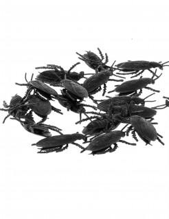 Halloween Dekoration Kakerlaken 12 Stück schwarz 6cm