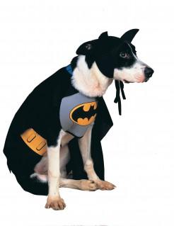 Hundekostüm Batman™