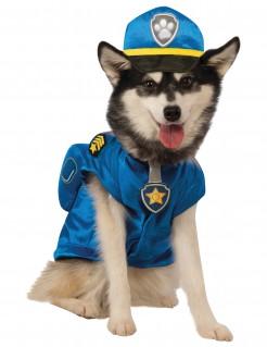 Paw Patrol™ Chase Hundekostüm Lizenzartikel blau-gelb