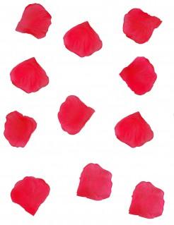 Deko-Rosenblätter 288 Stück rot