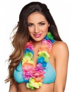 Hawaii-Halskette neonbunt