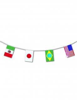 Länderflaggen-Girlande  bunt 5m