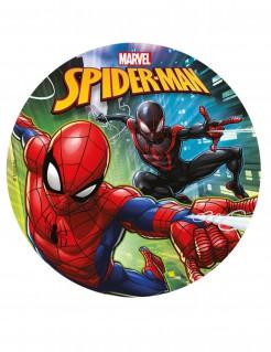 Spiderman™-Tortenaufleger Marvel-Lizenzartikel blau-rot und schwarz-rot 20cm