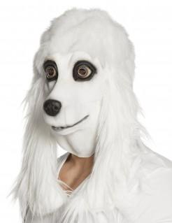 Pudel-Maske Hundemaske mit Schlappohren weiss