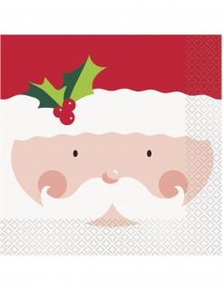 Weihnachtsmann-Servietten für festliche Anlässe 16 Stück rot-weiss-grün 33 x 33 cm