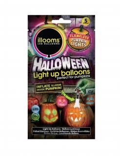 LED-Luftballons Halloween illooms™ bunt