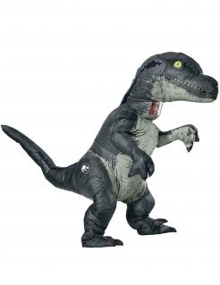 Velociraptor-Kostüm für Erwachsene grau