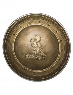 Wonder Woman™-Schild für Damen Kostüm-Accessoire bronze 60cm