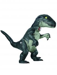 Velociraptor-Kostüm aufblasbar Jurassic World™ grau