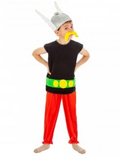 Asterix™-Kostüm für Jungen Asterix und Obelix bunt