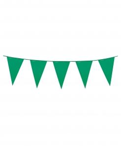 Girlande Mini-Wimpel Raumdeko grün 3m