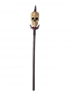 Speer mit aufgespiesstem Totenkopf Halloween-Waffe silber 142cm
