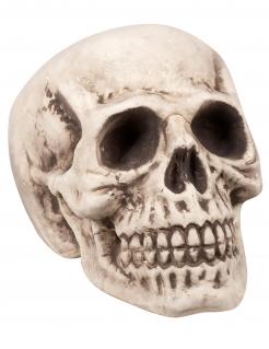 Totenkopf-Dekoration für Halloween beige-grau 23x22x31 cm