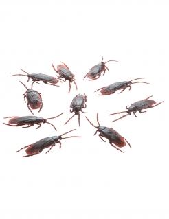 Kakerlaken aus Kunststoff Gruseldeko 10 Stück braun 7cm