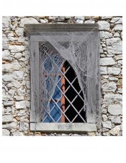 Deko-Netz für Türen und Fenster Halloween-Deko grau 200x75 cm