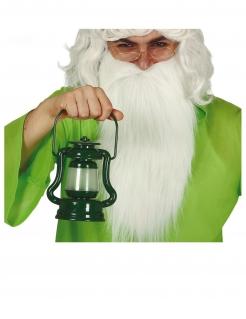Laterne mit Lichteffekt Accessoire Fasching grün 17 cm