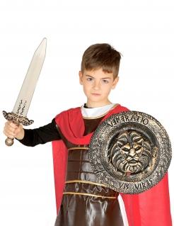 Römisches Schwert und Schild Gladiator-Set bronzefarben