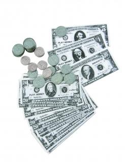 Banknoten und Dollarmünzen-Set 66-teilig grau-schwarz