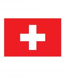 Schweizer Nationalflagge Fan-Flagge rot-weiss 150 x 90 cm