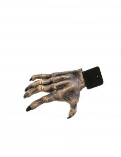 Zombie-Deko-Hand Halloween-Partydeko grau-beige 24 cm