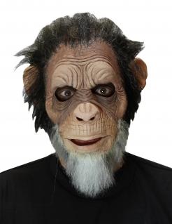 Alter Affe-Maske Faschingsmaske braun-grau