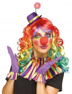 Fröhliches Clown-Zubehörset für Erwachsene bunt
