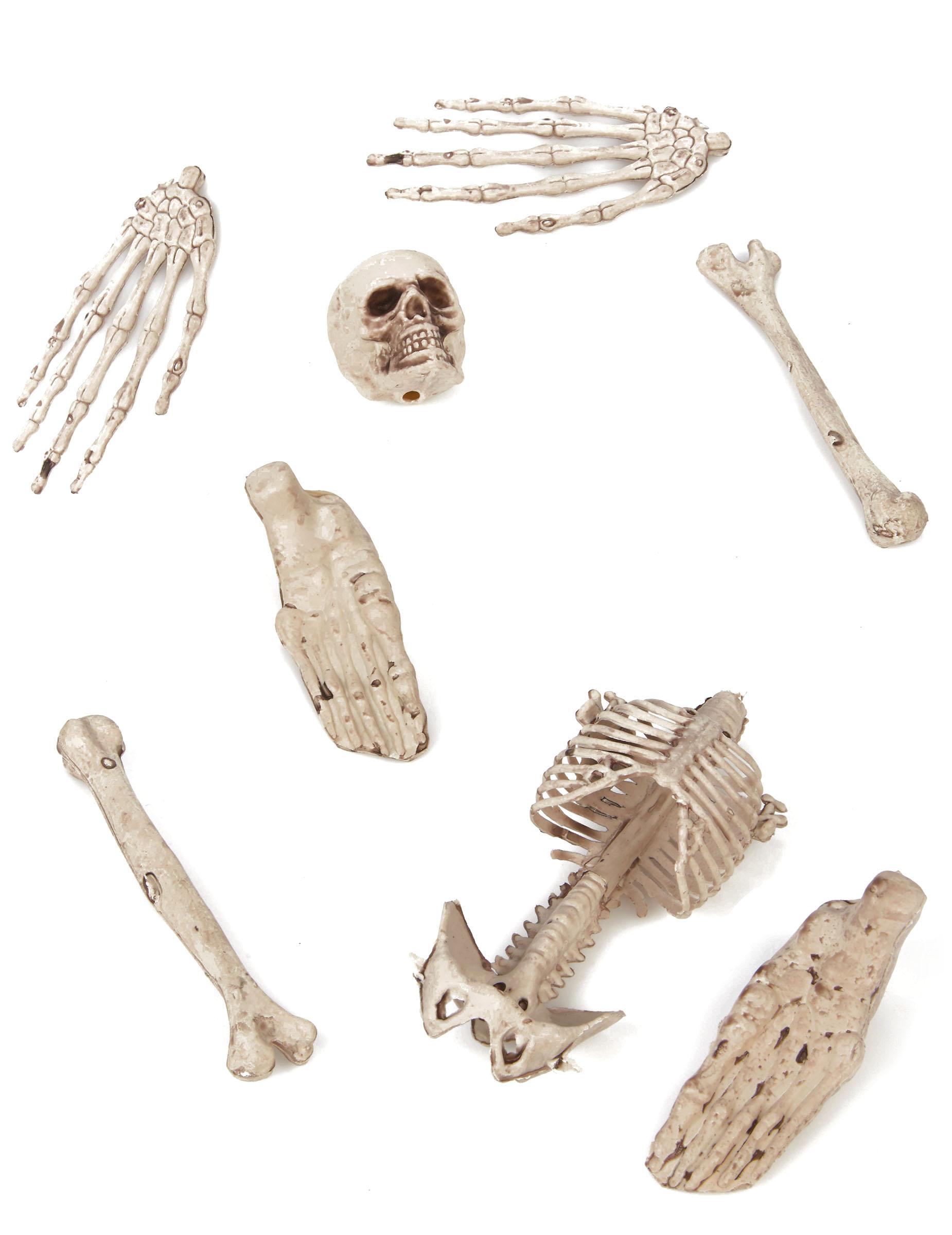 Sack mit Gebeinen und Knochen Halloween Party-Deko-Set 8-teilig ...