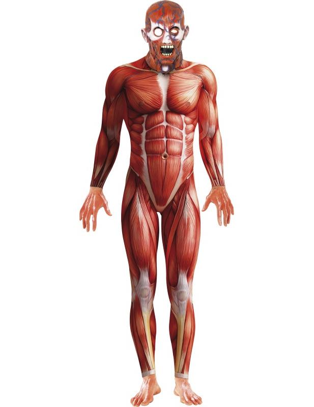 Horror Anatomie Halloween-Kostüm rot , günstige Faschings Kostüme ...