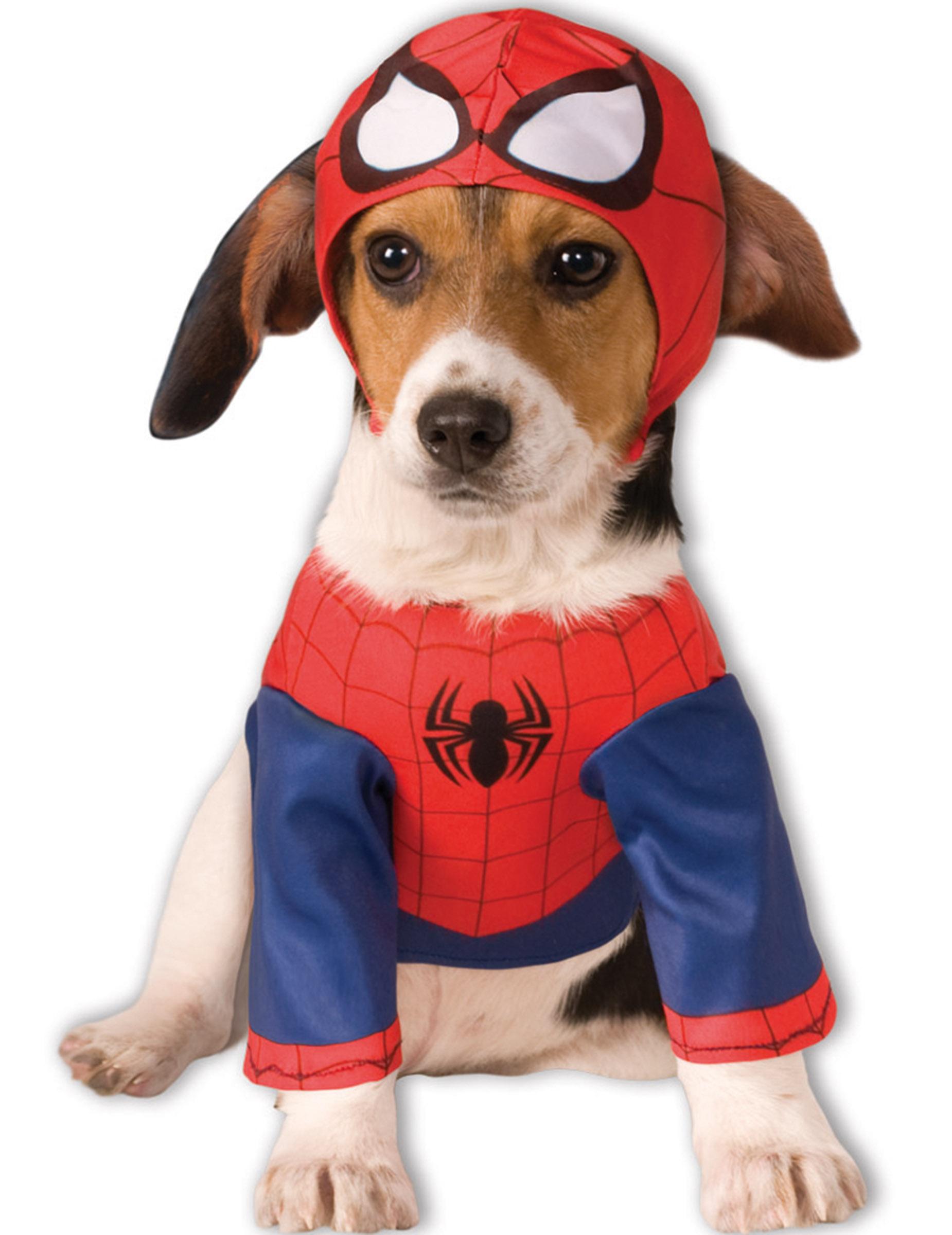 marvel spiderman hundekost m lizenzware rot blau g nstige faschings kost me bei karneval megastore. Black Bedroom Furniture Sets. Home Design Ideas