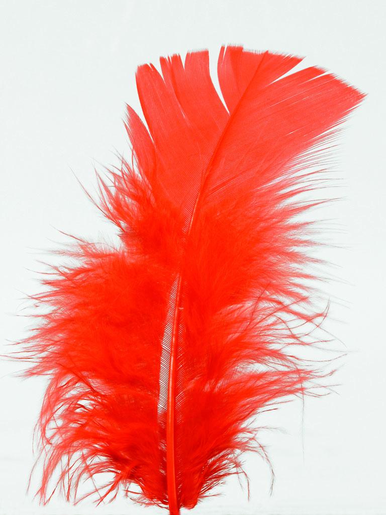 100 Federn rot