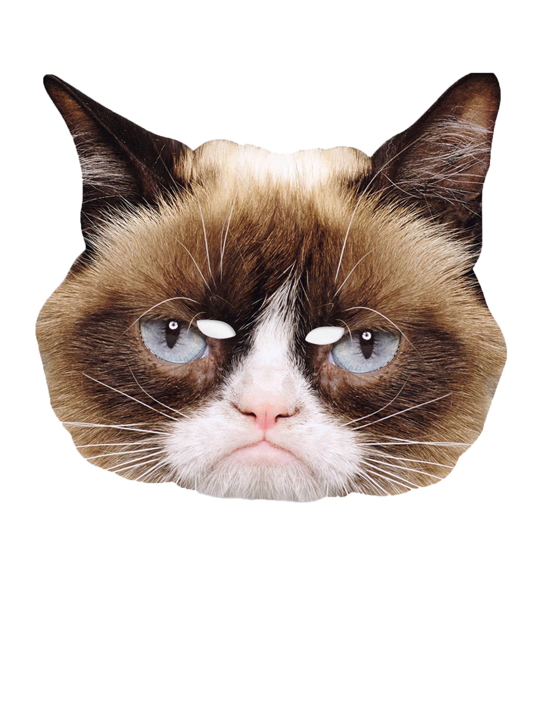 grumpy cat maske lizenzartikel kost mzubeh r bunt g nstige faschings masken bei karneval. Black Bedroom Furniture Sets. Home Design Ideas