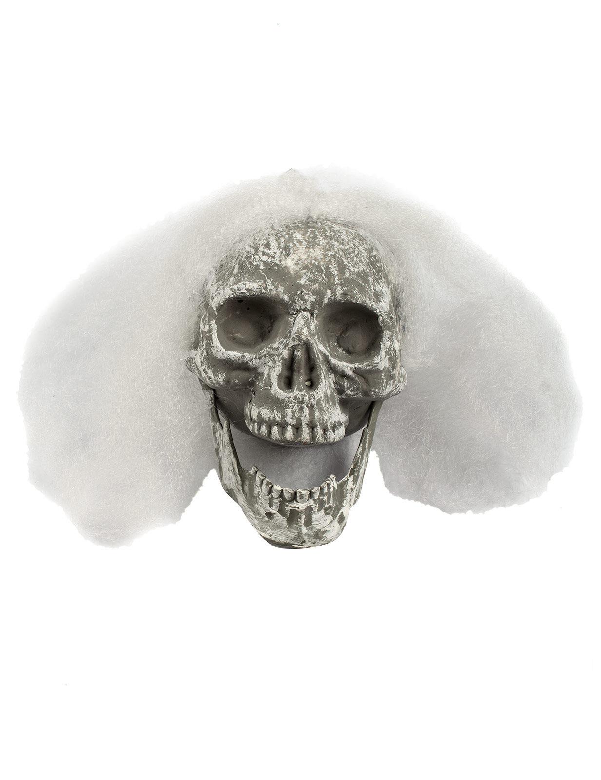 skelett sch del halloween deko weiss 23x14x11cm g nstige. Black Bedroom Furniture Sets. Home Design Ideas