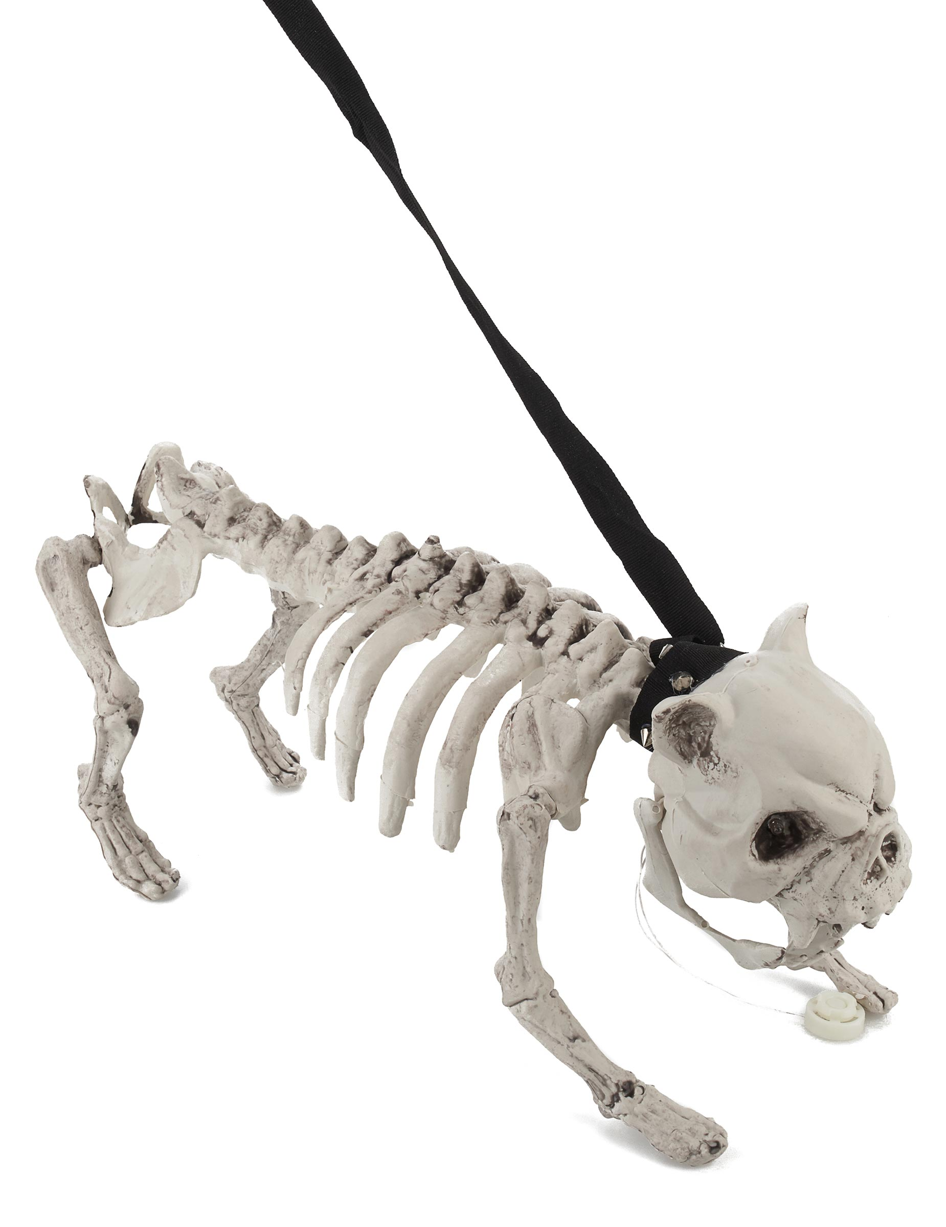 skelett hund mit licht und sound halloween party deko. Black Bedroom Furniture Sets. Home Design Ideas