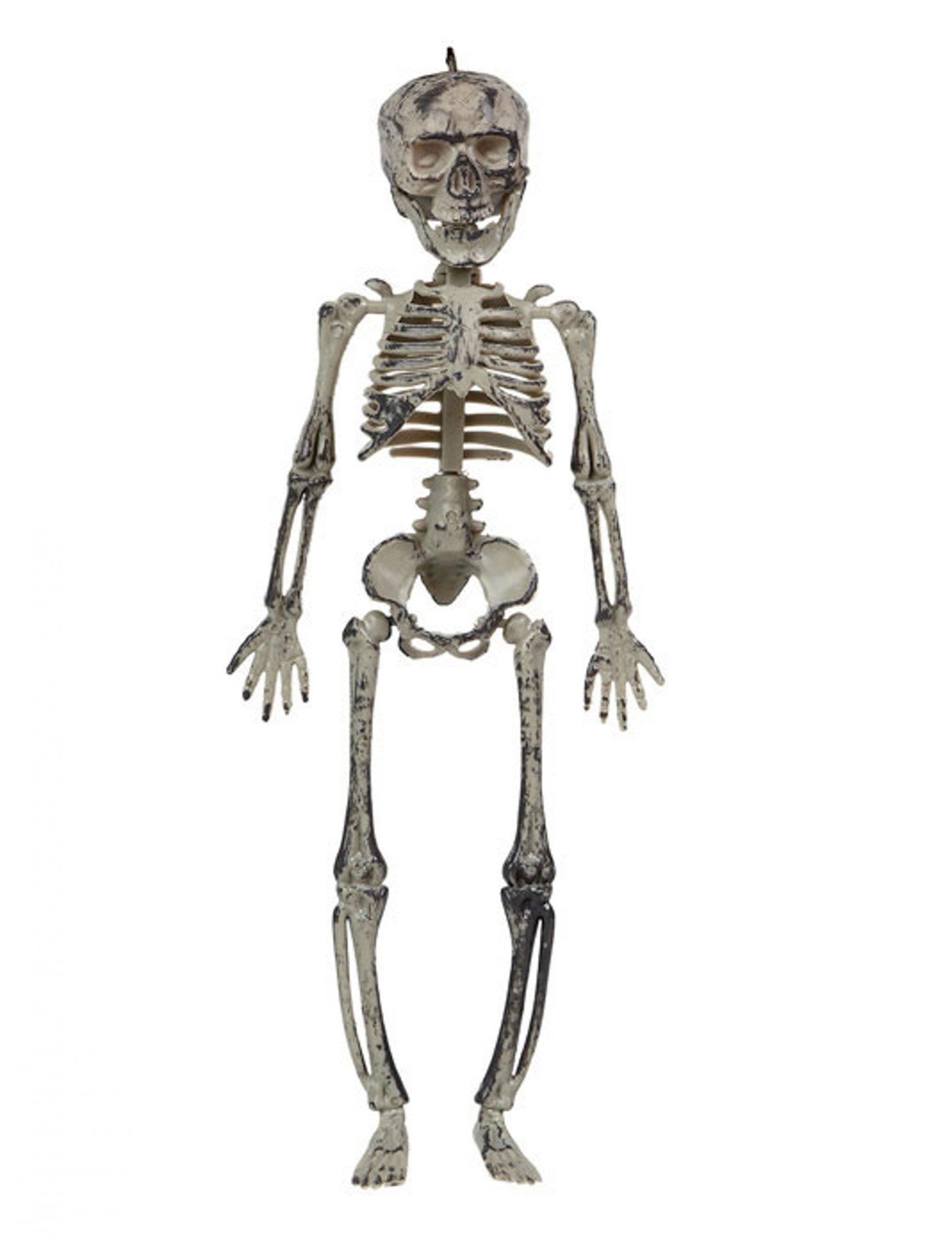 Skelett Hangedeko Halloween Deko Grau 30cm Gunstige Faschings Partydeko Zubehor Bei Karneval Megastore