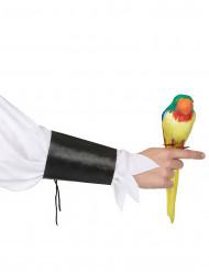Papagei Pirat-Accessoire bunt
