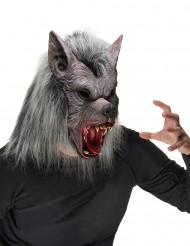 Wolf Maske Werwolf grau