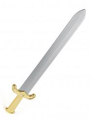 Römisches Schwert Römer Waffe gold-grau 60cm