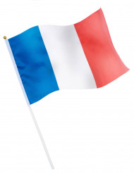 Französische Flagge Länderfahne Frankreich blau-weiss-rot 30x50 cm