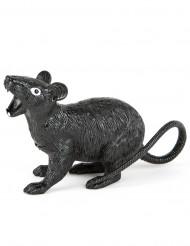 Hungrige Ratte Halloween-Horrortier schwarz