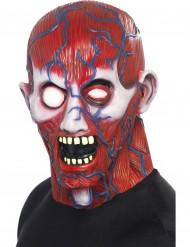 Zombie Horror Maske Halloween Maske rot-blau
