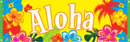 Hawaii Banner Aloha Party-Deko bunt 74x220cm