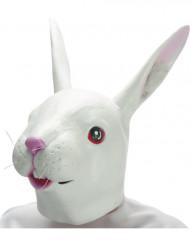 Kaninchenmaske Latex-Tiermaske
