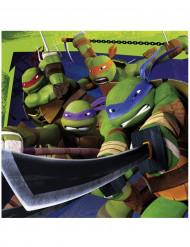Teenage Mutant Ninja Turtles™ Partyservietten Lizenzware 20 Stück bunt 33x33cm