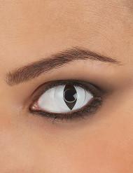 Kontaktlinsen Katze schwarz-weiss