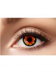 Motivlinsen Kontaktlinsen Vampir rot-schwarz